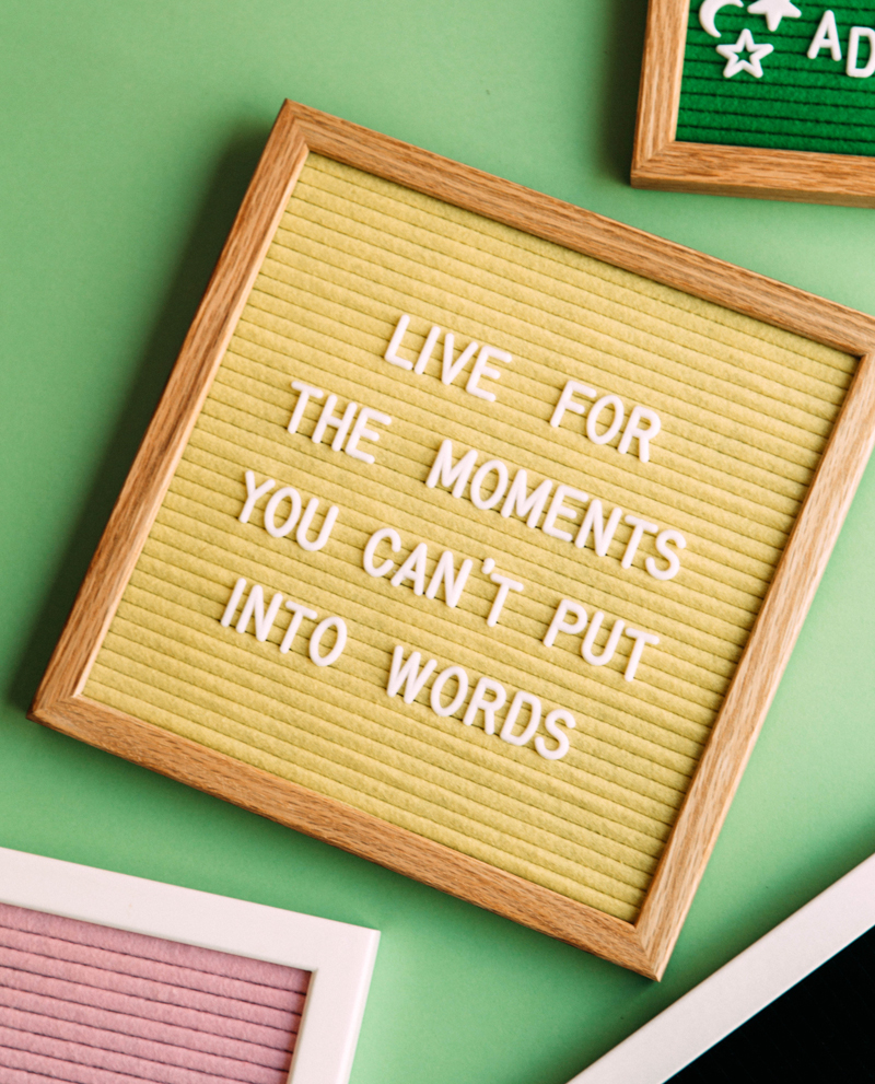 Funny Adventure Quotes