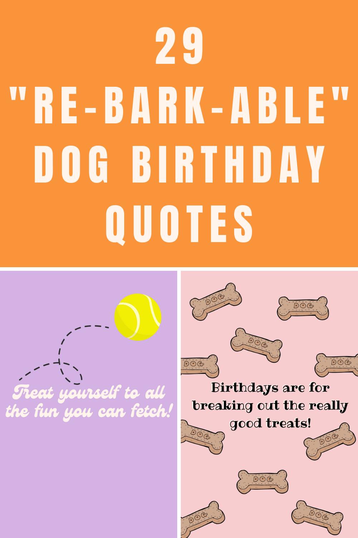 Dog Birthday Quotes