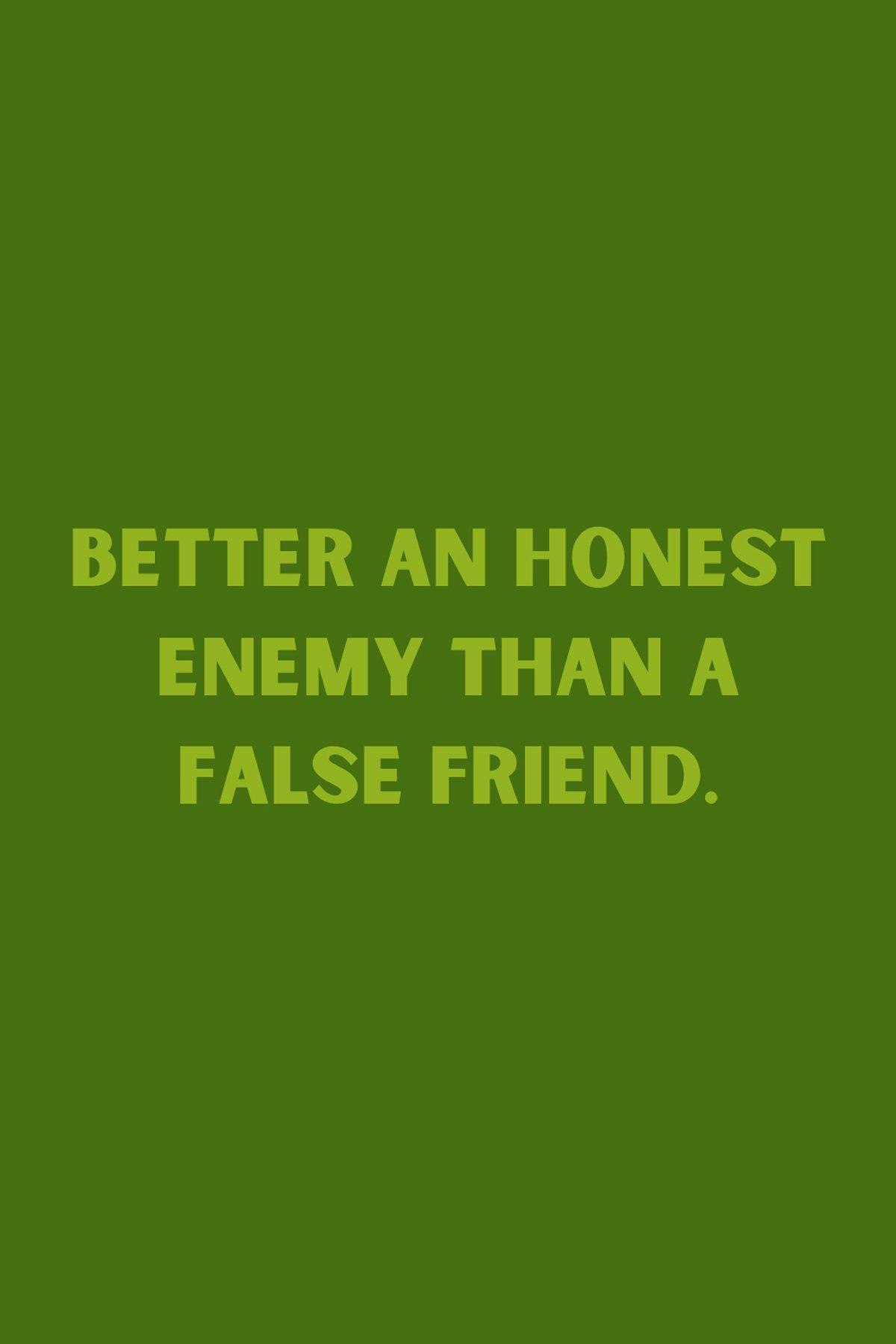 False Friend Quotes