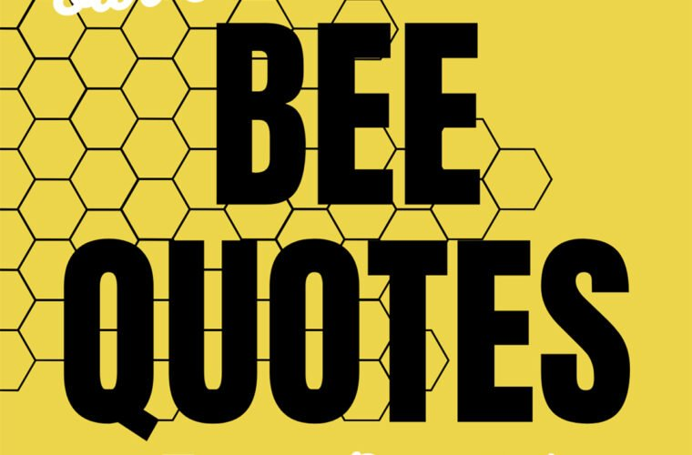 Bee Quotes + Captions