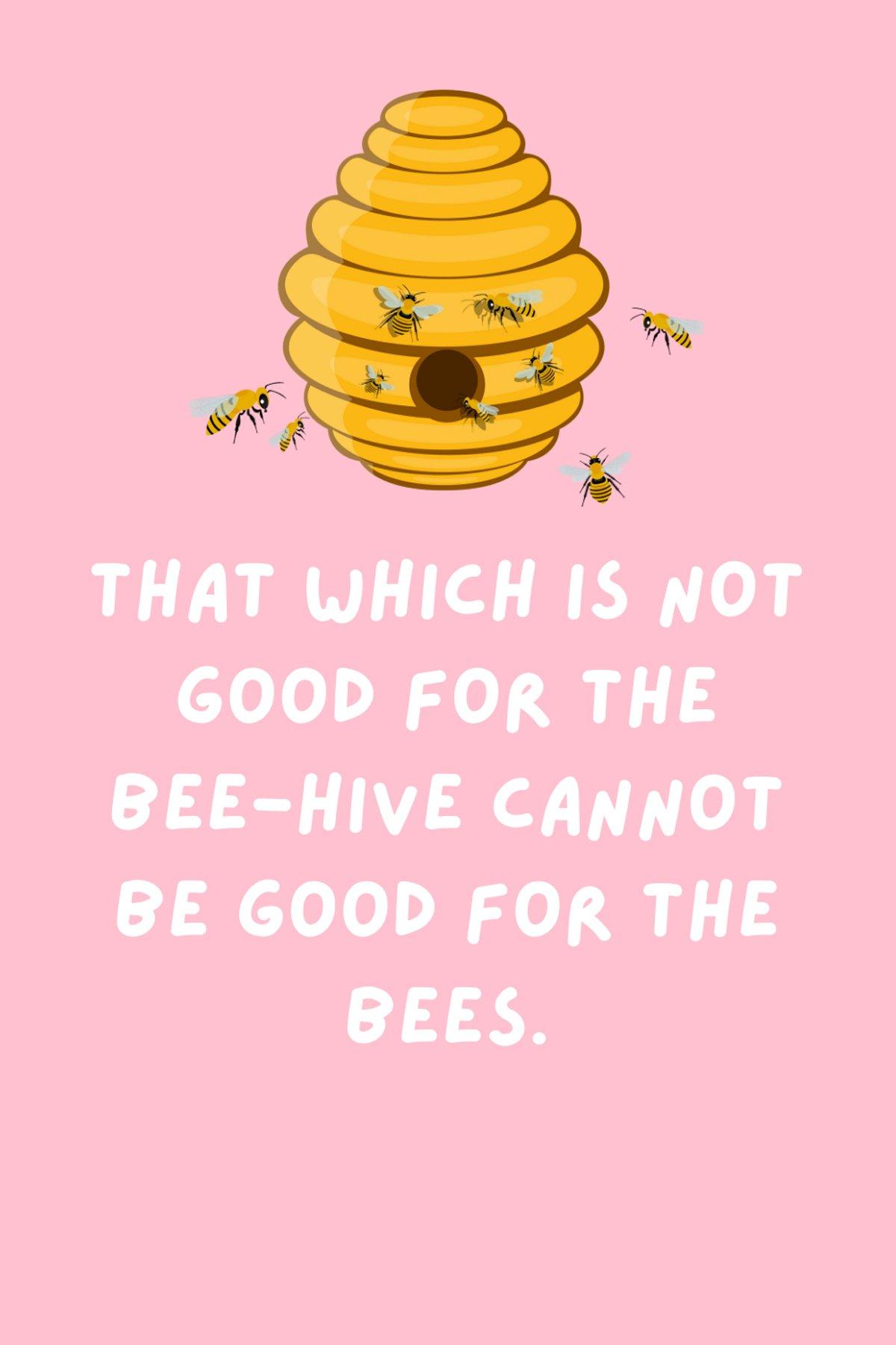 Hive quotes Captions